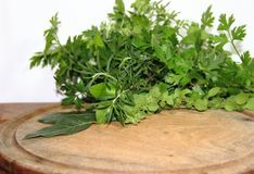 Aromatic herbs spices and kitchen condiments. Fresh aromatic herbs from the organic garden Stock Photos