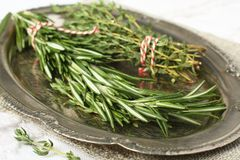 Fresh aromatic herbs rosemary and thyme on metal plate Royalty Free Stock Image