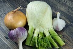 Fresh aromatic vegetables garlic, onion, fennel royalty free stock image