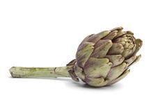Fresh artichoke Stock Photo