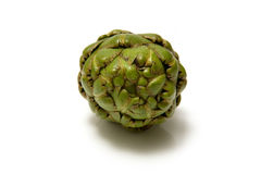 Fresh artichoke flower. A bright green fresh artichoke flower Stock Photography