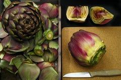 Fresh artichoke green-purple flower head, cutted Stock Photography