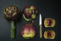 Fresh artichoke green-purple flower heads Royalty Free Stock Images