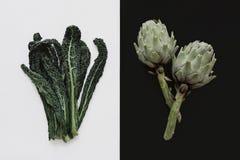 Fresh artichoke and kale leaf. Fresh artichoke and kale vegetable Stock Photo