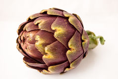 Fresh artichoke on a white background. Artichoke, typical Roman vegetable , Italy, in the studio on a white background Stock Photo