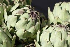 Fresh artichokes, close up Stock Photography