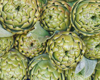 Fresh artichokes closeup Royalty Free Stock Photography