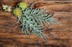Fresh artichokes on dark wooden plank Stock Images