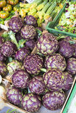 Fresh artichokes on a market in Italy Royalty Free Stock Photos