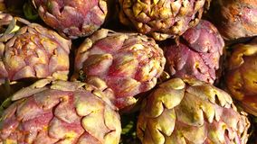 Fresh artichokes on the market royalty free stock images
