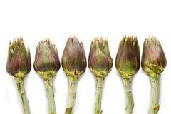 Fresh artichokes Royalty Free Stock Photography