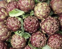 Fresh artichokes for sale at vegetable market 4 Stock Photography