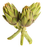 Fresh artichokes Royalty Free Stock Image