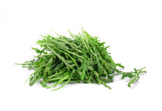 Fresh arugula bunch. Royalty Free Stock Photography
