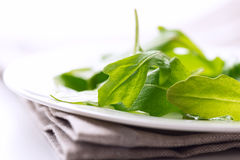 Fresh arugula leaves macro on napkin Royalty Free Stock Images