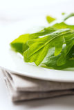 Fresh arugula leaves on napkin Royalty Free Stock Photography