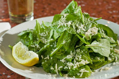 Fresh arugula salad Royalty Free Stock Image