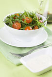 Arugula salad. Fresh arugula salad with cherry tomatoes in a white bowl royalty free stock photography
