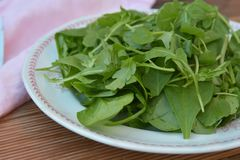 Fresh arugula and spinach salad plate for healthy life, on rustic wooden background stock images
