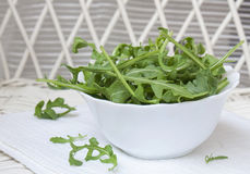 Fresh Arugula in White Bowl on White Wood. Rucola or arugula, fresh green rocket salad leaves. eruca sativa, in a white ceramic bowl Royalty Free Stock Image
