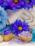 Natural fresh cosmetics fresh as spring. Fresh as spring concept, natural cosmetics royalty free stock image