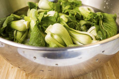 Fresh Asian Choy - Spinach in Bowl Royalty Free Stock Photography