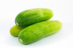 Fresh Asian cucumbers on white background. Isolated Royalty Free Stock Images