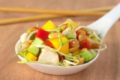 Fresh Asian Salad with Chicken Stock Image