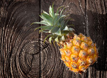 Fresh Asian small pineapple. On wooden plate in outdoor hard sunlight and dark shadow Royalty Free Stock Photography