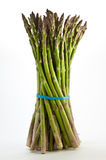 Fresh Asparagus. A bundle of fresh asparagus wrapped with an elastic band standing upright on a white background Stock Photography
