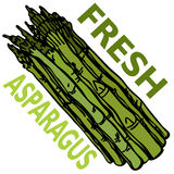 Fresh Asparagus Royalty Free Stock Image
