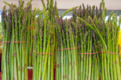 Free Fresh Asparagus Stock Images - 25564664