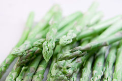 Fresh asparagus Stock Images