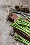 Fresh asparagus on a cutting board Stock Photography