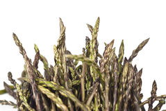 Fresh asparagus isolated Royalty Free Stock Photography