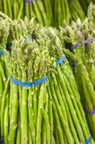 Fresh asparagus from market shelves real Stock Photos