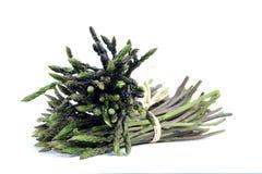 Fresh asparagus of natural origin. royalty free stock photo