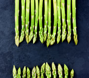 Fresh Asparagus Sprouts Royalty Free Stock Images