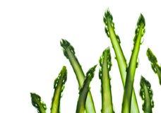Fresh asparagus Royalty Free Stock Photo