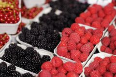 Fresh assorted berries Royalty Free Stock Photos
