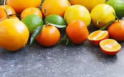 Fresh assorted citrus fruits Royalty Free Stock Images