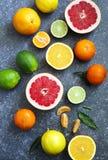 Fresh assorted citrus fruits Royalty Free Stock Photo