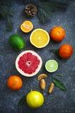 Fresh assorted citrus fruits Royalty Free Stock Image