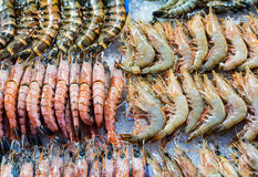 Fresh assorted prawn Royalty Free Stock Images