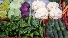 Fresh assorted vegetables Royalty Free Stock Photo