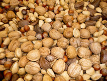 Fresh assortmant of nuts Stock Photography