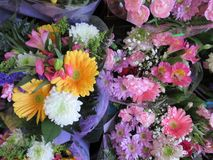 Fresh and attractive many colorful flower bouquets at the florist. Fresh and attractive many colorful flower bouquets from the florist, Canada royalty free stock photos