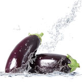 Fresh aubergine falling in water Royalty Free Stock Photo