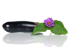 Fresh aubergine Stock Photo