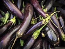Fresh aubergines - eggplants Royalty Free Stock Photography